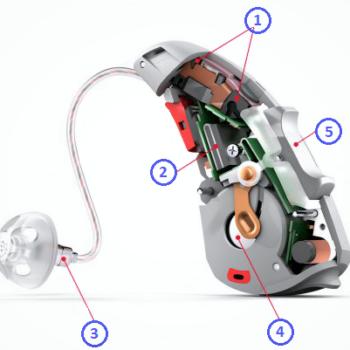 jak zbudowany jest aparat słuchowy